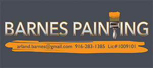 Barnes Painting Business Card
